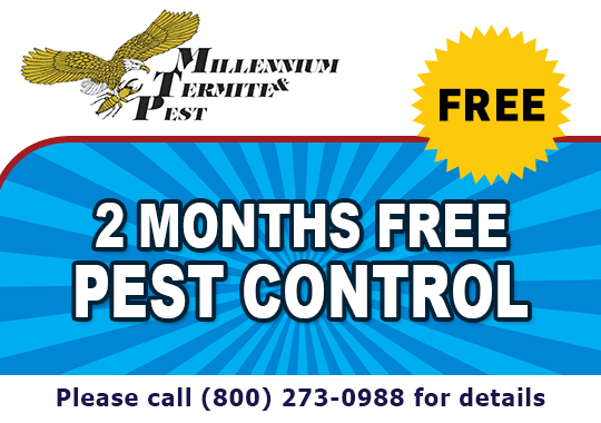 2 Months Free Pest Control - Call For Details